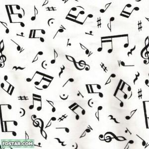 muzik.jpg